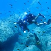 Mare Sud Diving Center